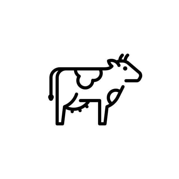 Vector Cow Icon Template Vector cow icon template. Organic natural food logo for diary eco products, farmers market. Line farm cattle symbol illustration female animal stock illustrations