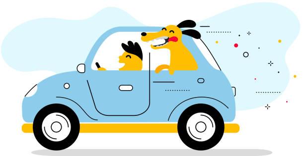 bildbanksillustrationer, clip art samt tecknat material och ikoner med vektor kreativ illustration av blå färg retro bil med mannen driver och leende hund på vit bakgrund. - kör
