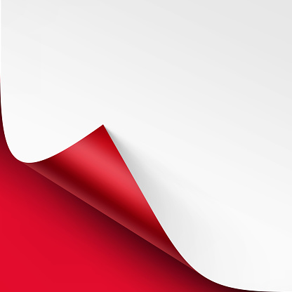 Vector Curled corner of White paper with shadow Mock up Close up Isolated on Bright Red Scarlet Background