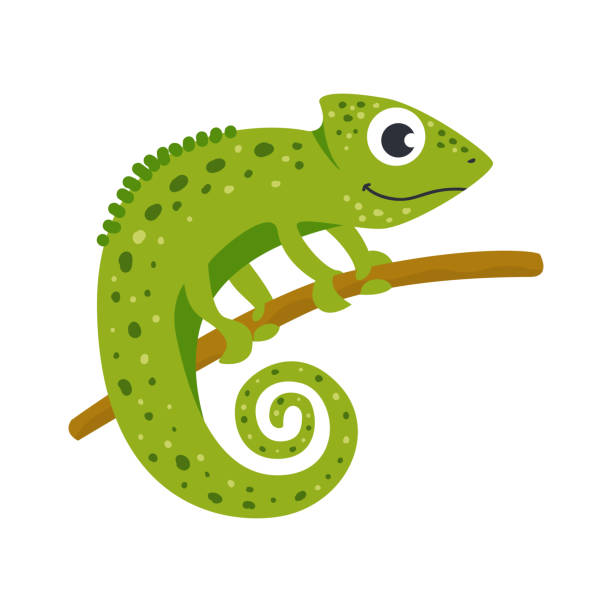 Vector cute African animal. Chameleon. Vector cute African animal. Chameleon. Funny character for kids. Isolated element for stickers, cards, invites and posters chameleon stock illustrations