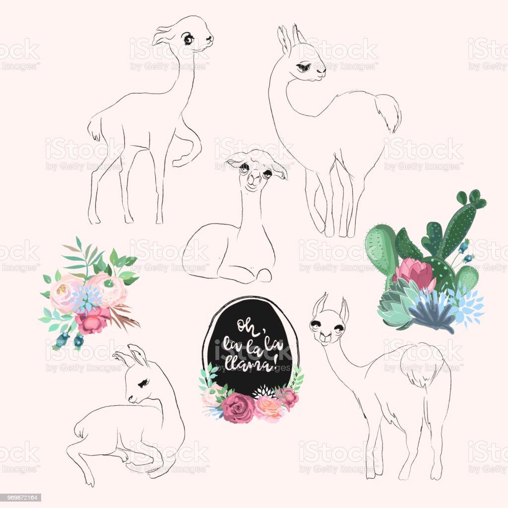 Vektor Niedlichen Baby Lama Alpaka Zeichen Setzen Zeichnen