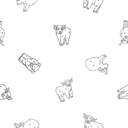 Vector cute black white outline seamless pattern of highland Scottish cows bulls, which sit, stand, lie on ground. Animals are isolated. Illustration can be used as print for clothes or coloring book