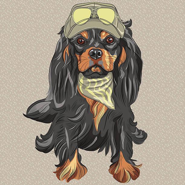 vektor niedlichen hipster hund cavalier king charles spaniel rasse - hundehaarbögen stock-grafiken, -clipart, -cartoons und -symbole
