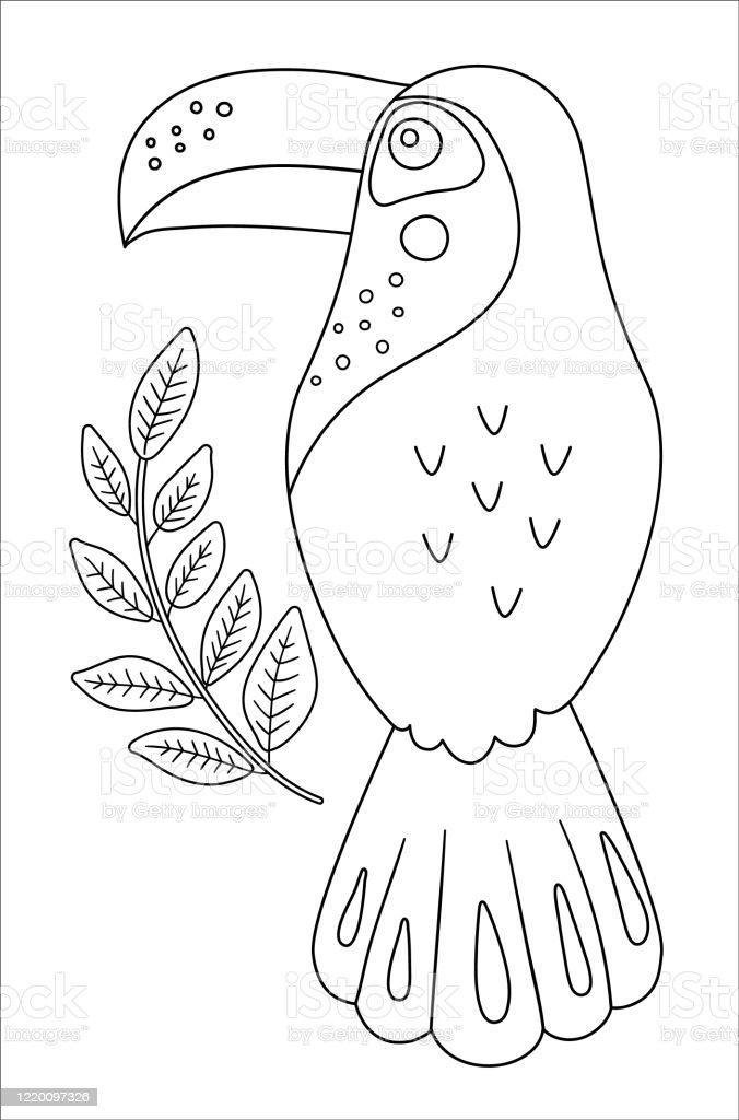 Tropical Birds Coloring Pages | 1024x676