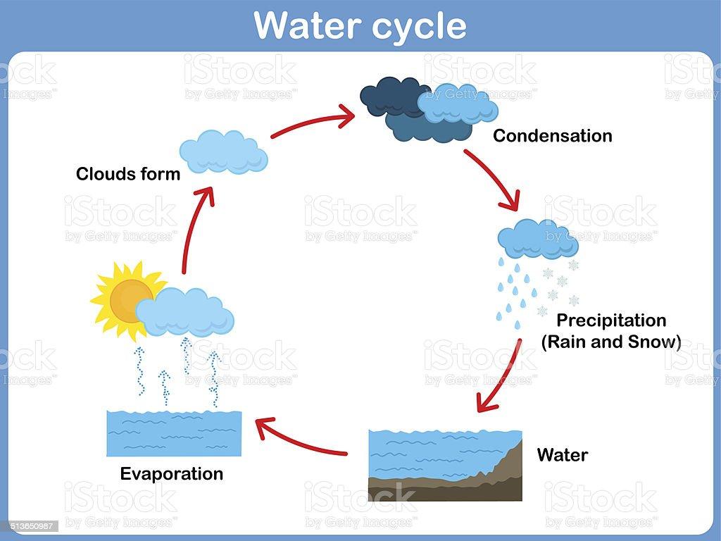 diagrama del ciclo del agua