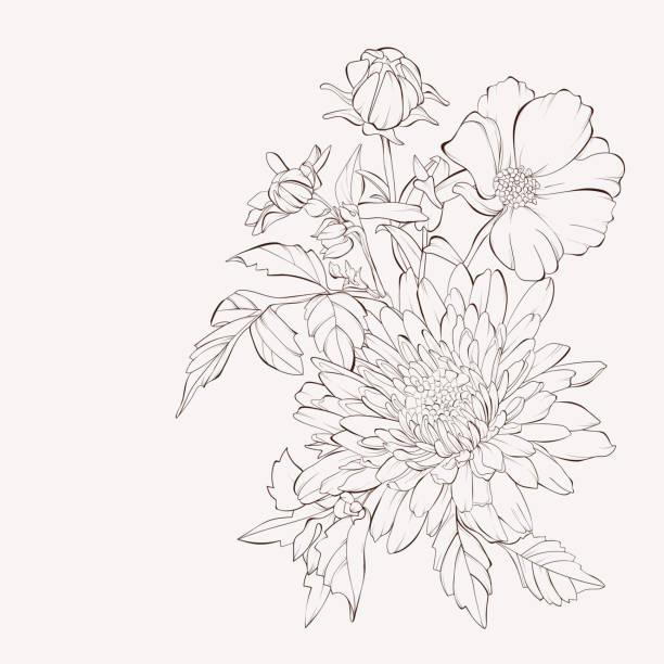 stockillustraties, clipart, cartoons en iconen met vector dahlia bloem.  herfst bloemen boeket.  element voor ontwerp. handgetekende contour lijnen en lijnen. - dahlia
