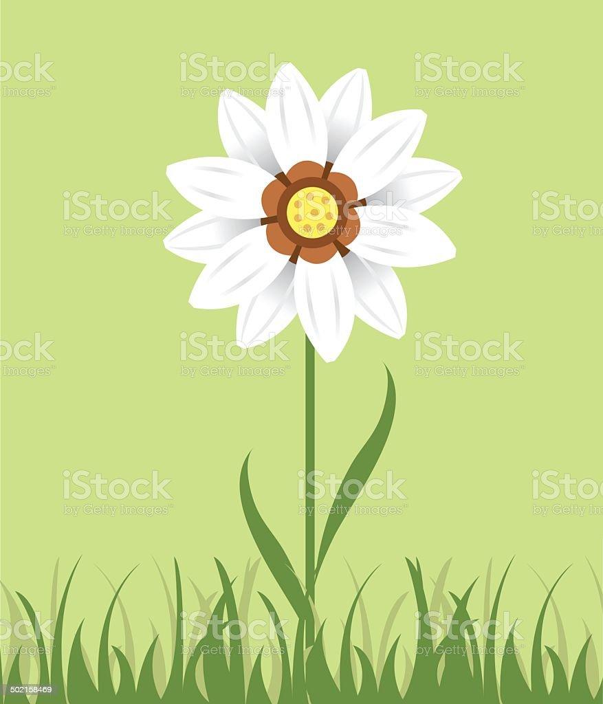 Vector Daisy in Grass vector art illustration
