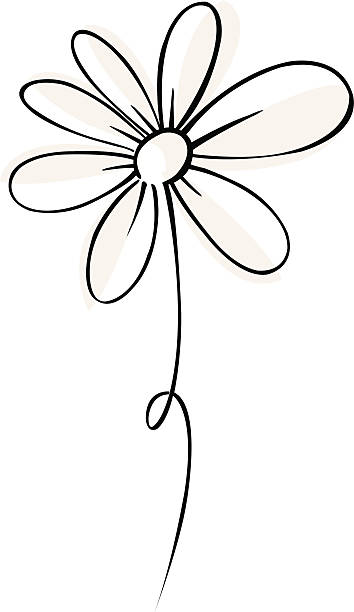 vector daisy vector daisy daisy stock illustrations