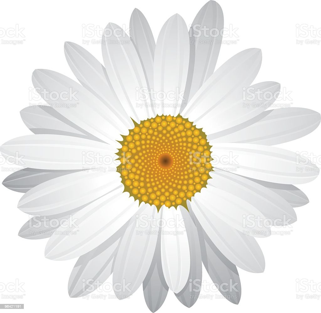 Vector Daisy with moveable petals vector art illustration