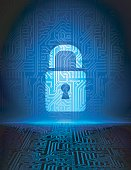 Vector data security background