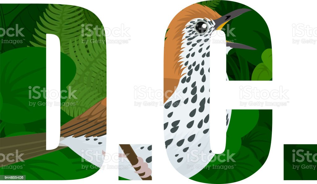 Vector Dc American District Of Columbia Word With Wood Thrush Stock