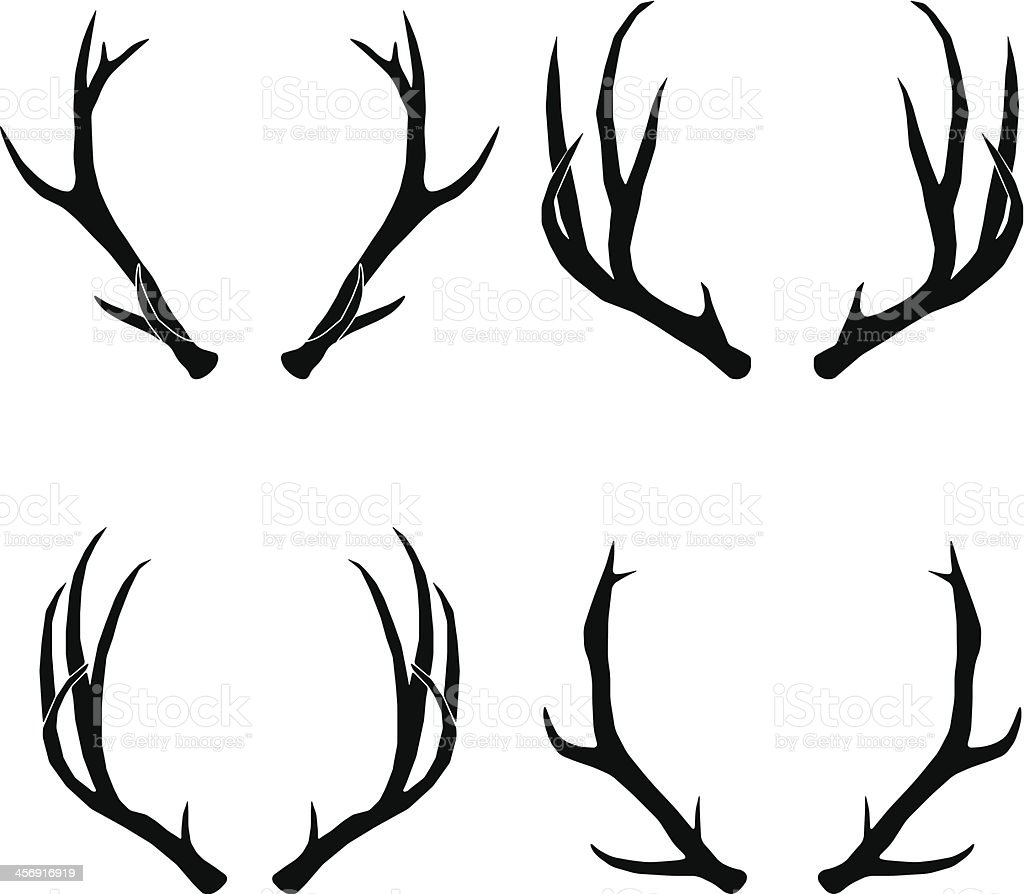 vector deer antlers collection stock vector art  u0026 more