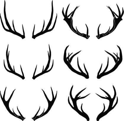 vector deer antlers collection