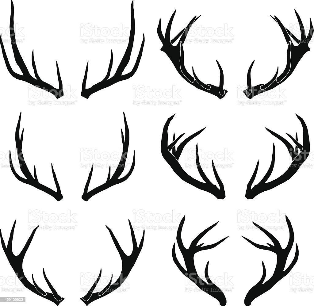 vector deer antlers collection vector art illustration