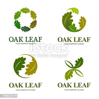 Vector design elements for business. Oak leaf