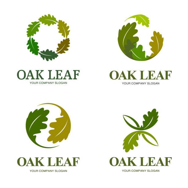 Vector design elements for business. Oak leaf Vector design elements for business. Oak leaf oak leaf stock illustrations