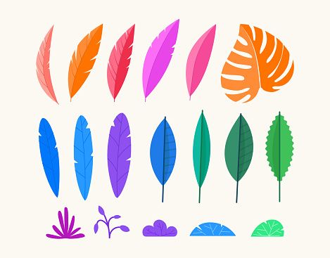 Vector design elements set. Collection of color leaves