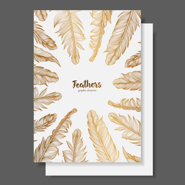 Vector design template with gold feathers for invitations, wedding greeting cards, certificate, labels Vector design template with gold feathers for invitations, wedding greeting cards, certificate, labels. invitational stock illustrations