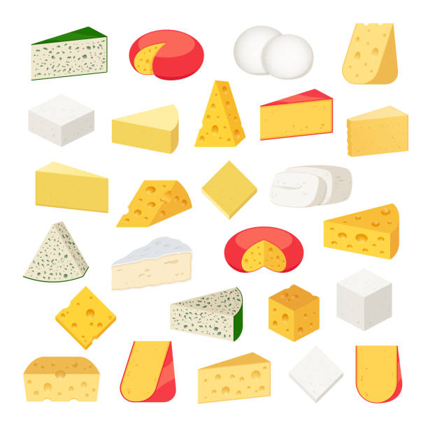 illustrazioni stock, clip art, cartoni animati e icone di tendenza di vector different types of cheese detailed icons - formaggio