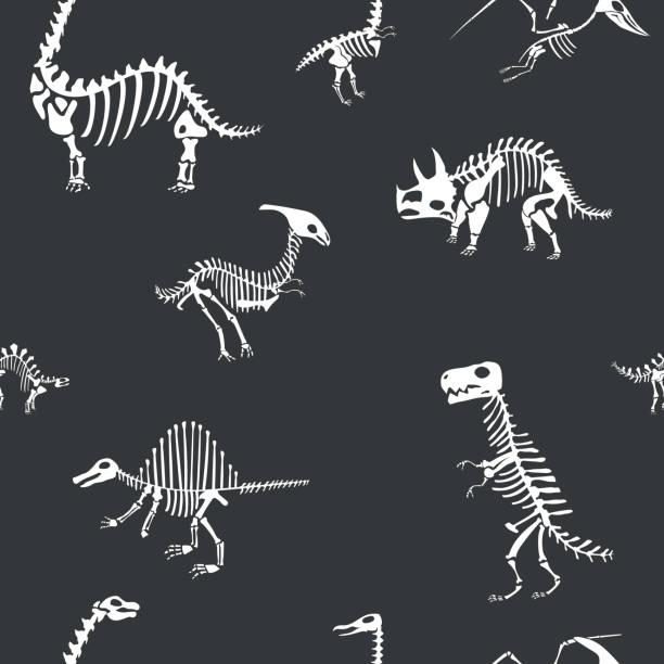 vector dinosaur skeleton pattern. dino seamless bone wrap background - animal skeleton stock illustrations
