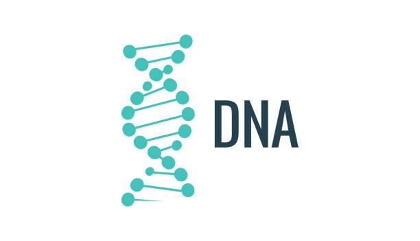 vektor-dna-logo-symbol. gen leben oder mollecule ausführung. biologie-konzept-abbildung - dna stock-grafiken, -clipart, -cartoons und -symbole