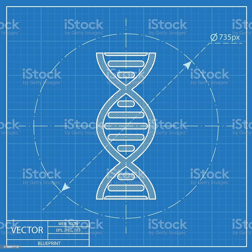 Vector dna molecule blueprint icon stock vector art more images of vector dna molecule blueprint icon royalty free vector dna molecule blueprint icon stock vector art malvernweather Choice Image