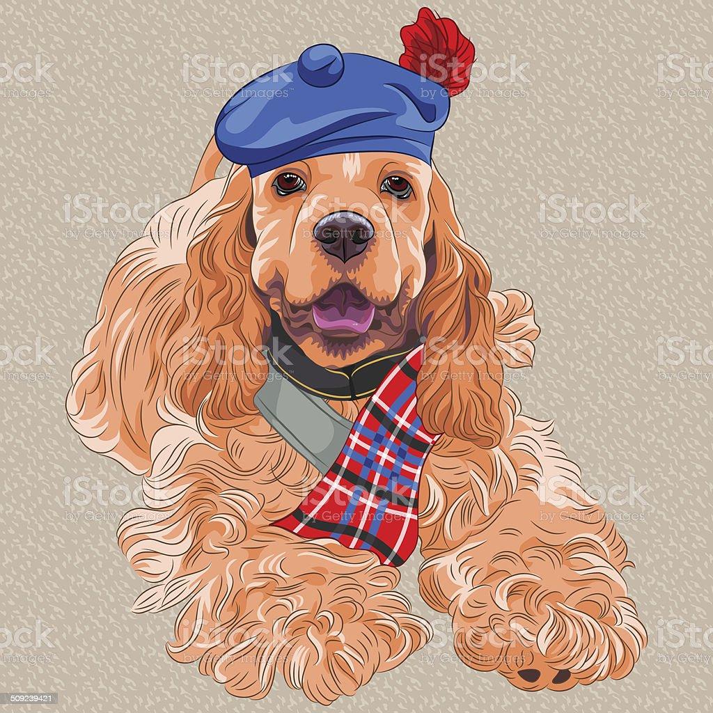 vector dog American Cocker Spaniel  in Scottish Tam vector art illustration