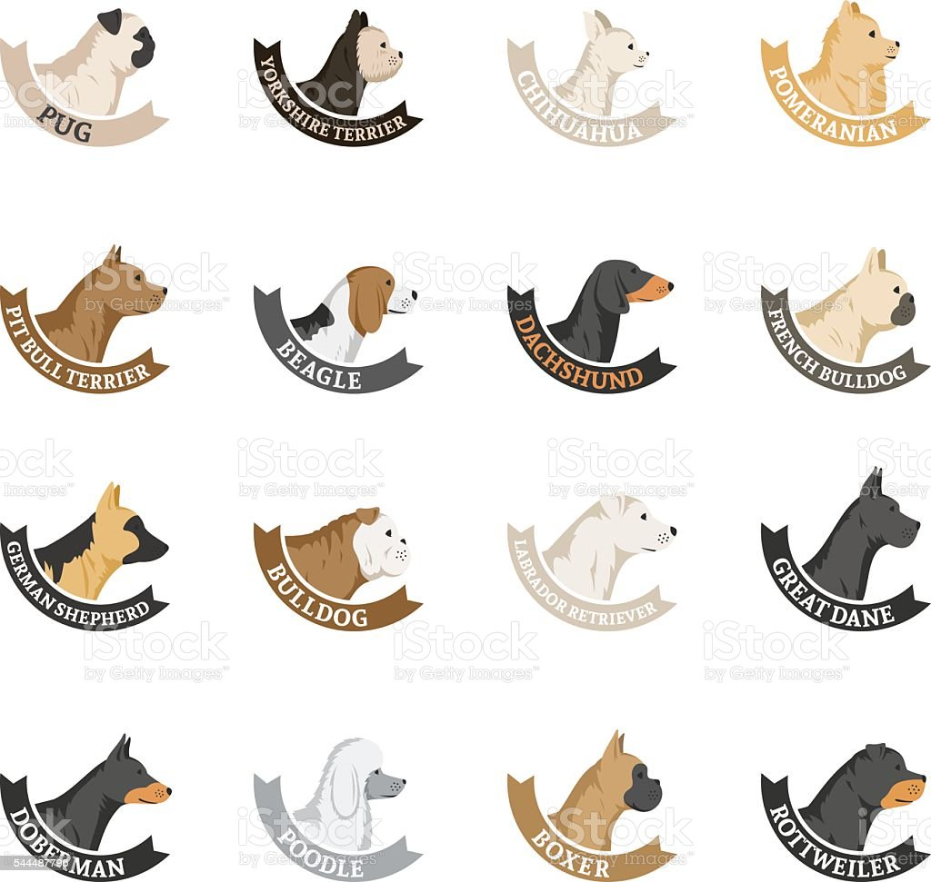 Vector dog breeds icons collection isolated on white vector art illustration