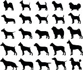 Vector dog breeds silhouettes collection isolated on white