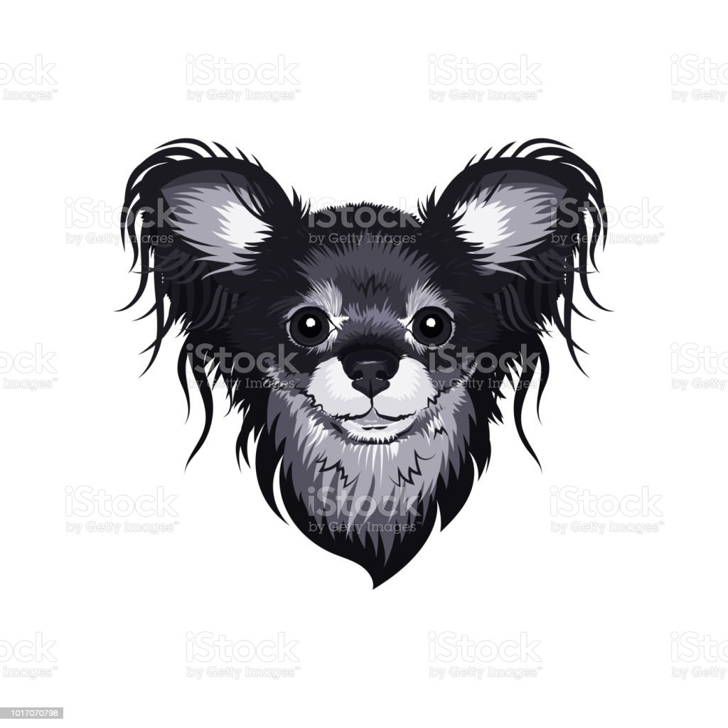 Vector Dog face, Russian Toy Terrier small breed of dog. Stylish gray dog head. Isolated illustrations for print on T-shirt, sticker, embroidery, pillow, badge, poster vector art illustration