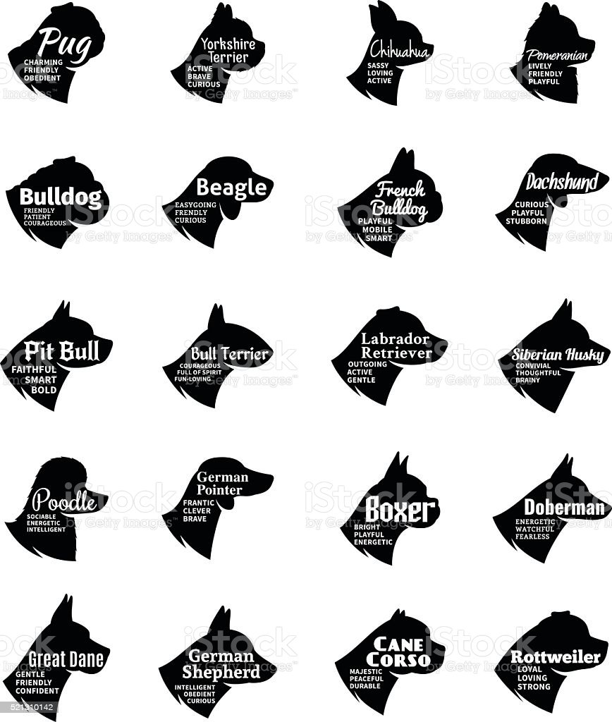 Vector dog icons collection isolated on white vector art illustration