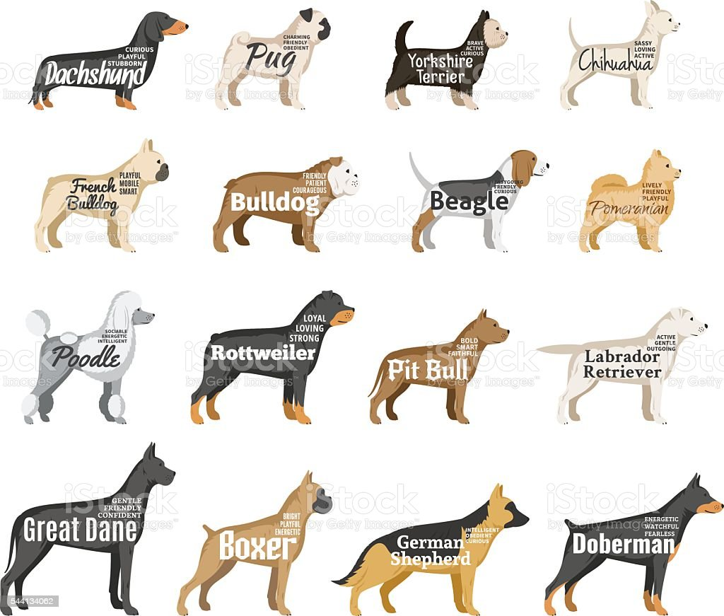 Vector dog silhouettes collection isolated on white vector art illustration