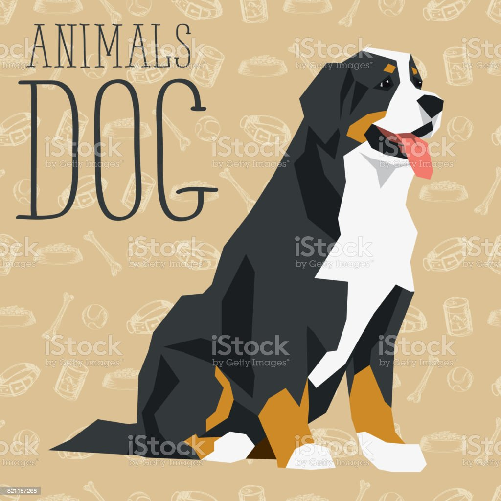 Vector Dogs Collection vector art illustration
