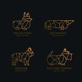 Vector line dogs icon or emblem set. Golden illustrations of dachshund, welsh corgi pembroke, french bulldog, scottish terrier on black background. Breed of dogs trendy geometric illustration.