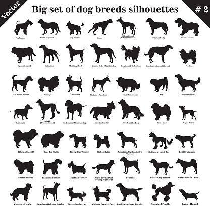 Vector dogs silhouettes 2