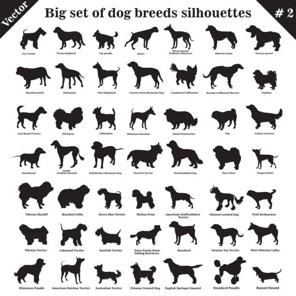 sylwetki psów wektorowych 2 - dog stock illustrations