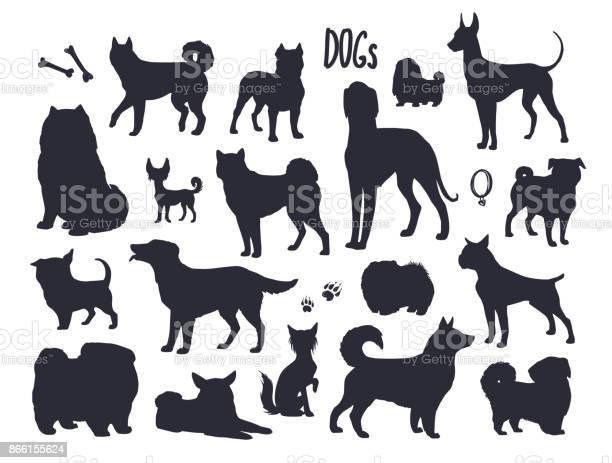 Vector dogs silhouettes vector id866155624?b=1&k=6&m=866155624&s=612x612&h=twgxashsykrbfcra6cgcgtfax0ugvwmj 2t20bstcgq=