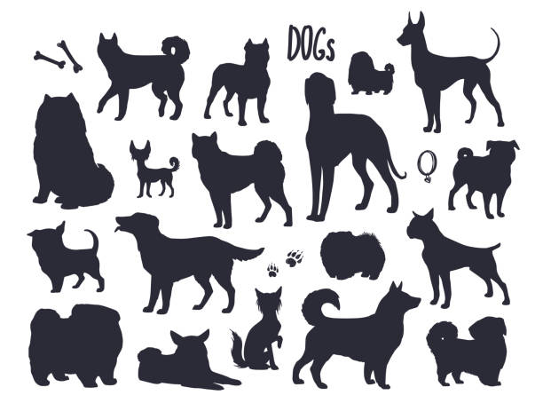 Vector dogs silhouettes. vector art illustration