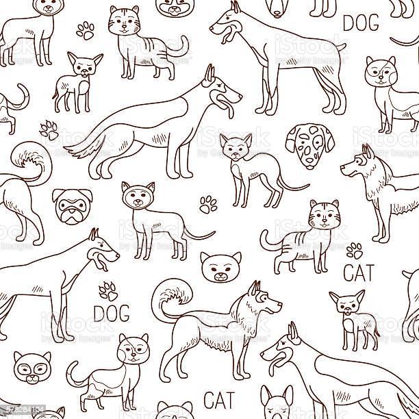 Vector doodle pets pattern vector id578284104?b=1&k=6&m=578284104&s=612x612&h=auwcz slrgnjjn  enxsewao3lfd9w0nf2req6wuneg=