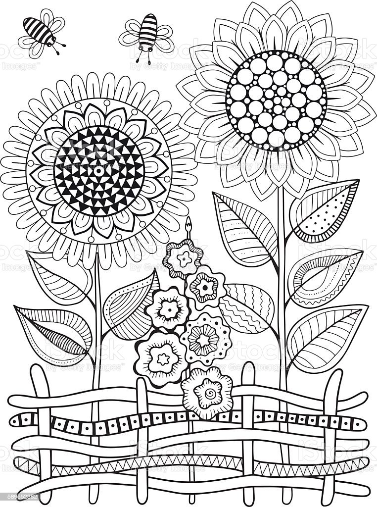 Vector doodle sunflowers. Coloring book for adult. Summer flowers. Flowerbed vector art illustration