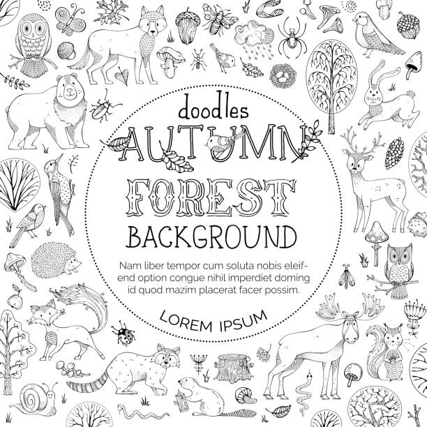 Vector doodles autumn forest background. Hand-drawn woodland animals. Autumn trees and bushes. Elk, fox, wolf, owl, bear, deer, squirrel, hedgehog, racoon and other mammals and birds. Round frame. bee borders stock illustrations
