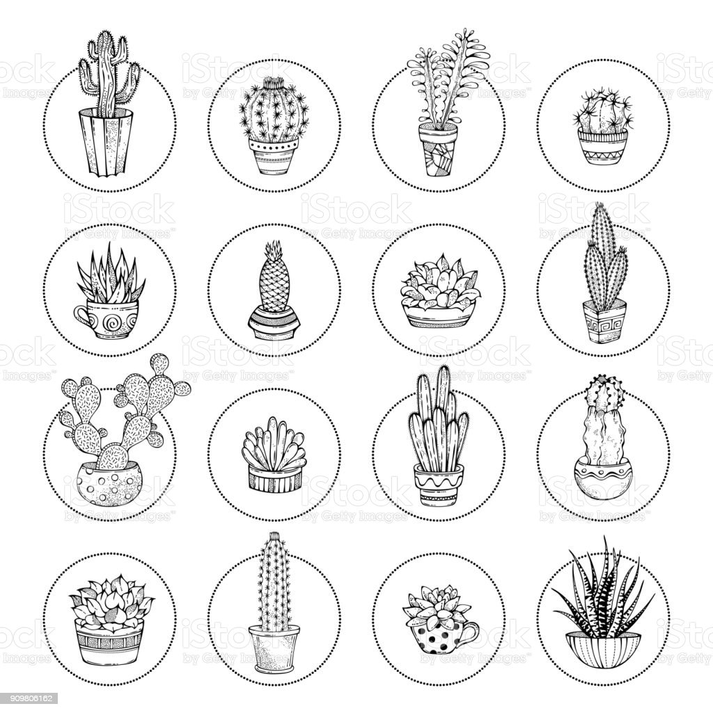 Vector doodles cacti and succulent icon set. vector art illustration
