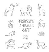 Vector doodles set of wild forest animals.