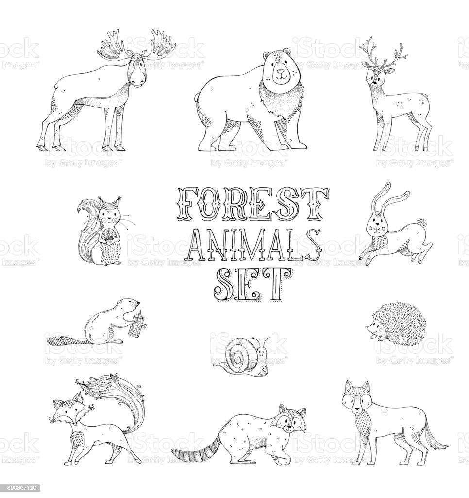 Vector doodles set of wild forest animals. vector art illustration
