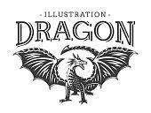 Vector Dragon illustration, print, emblem design on a white background.