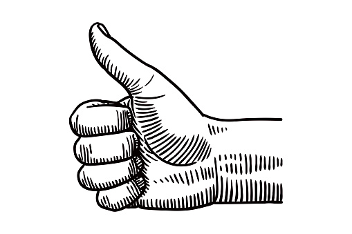 Vector drawing of a hand showing thumb up