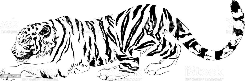 Vetores De Vetor Desenhos Preto E Branco Predador Tigre