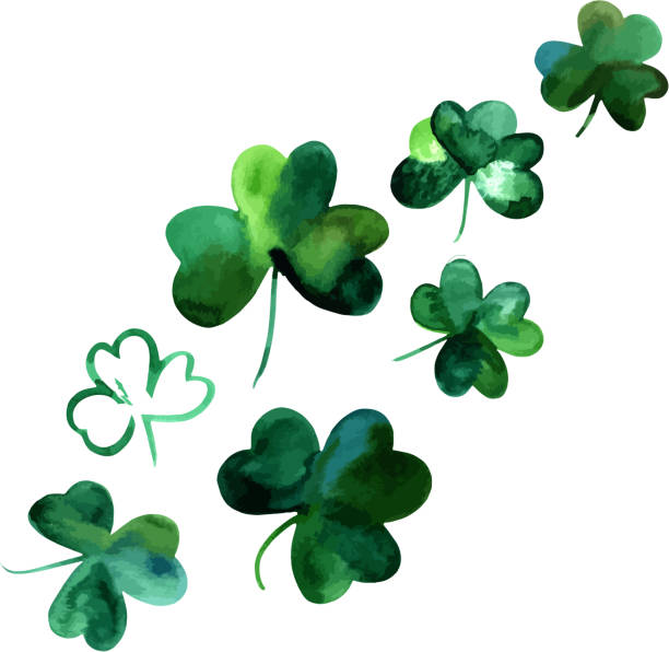 Vector drawings of watercolor shamrocks, isolated on white vector art illustration