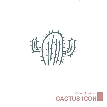Vector drawn cactus