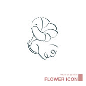 Vector drawn flowers. Isolated on white background.